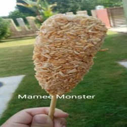 MOZA MAMEE MONSTER